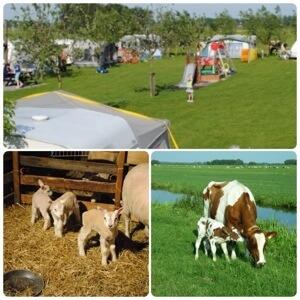 heel veel leuke idyllische campings in Nederland met kids #leukmetkids Camping t Oortjeshek in Kamerik bij Woerden, Utrecht: