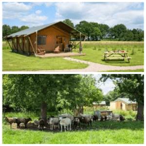 Een overzicht van heel veel leuke idyllische campings in Nederland met kids #leukmetkids FarmCamps Den Branderhorst in Hengelo, Gelderland