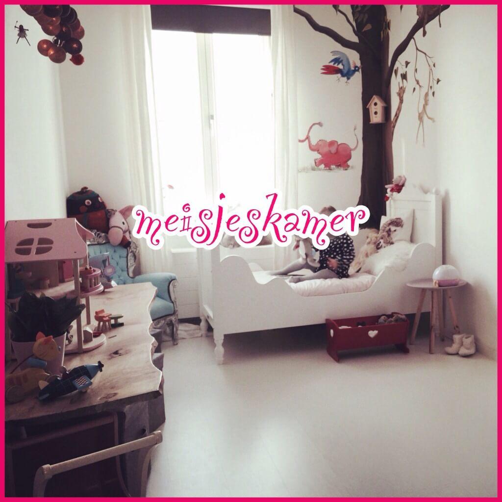 Mooie sprookjes meisjeskamer voor peuter en kleuter leuk met kids - Kleur van kamer voor meisje ...