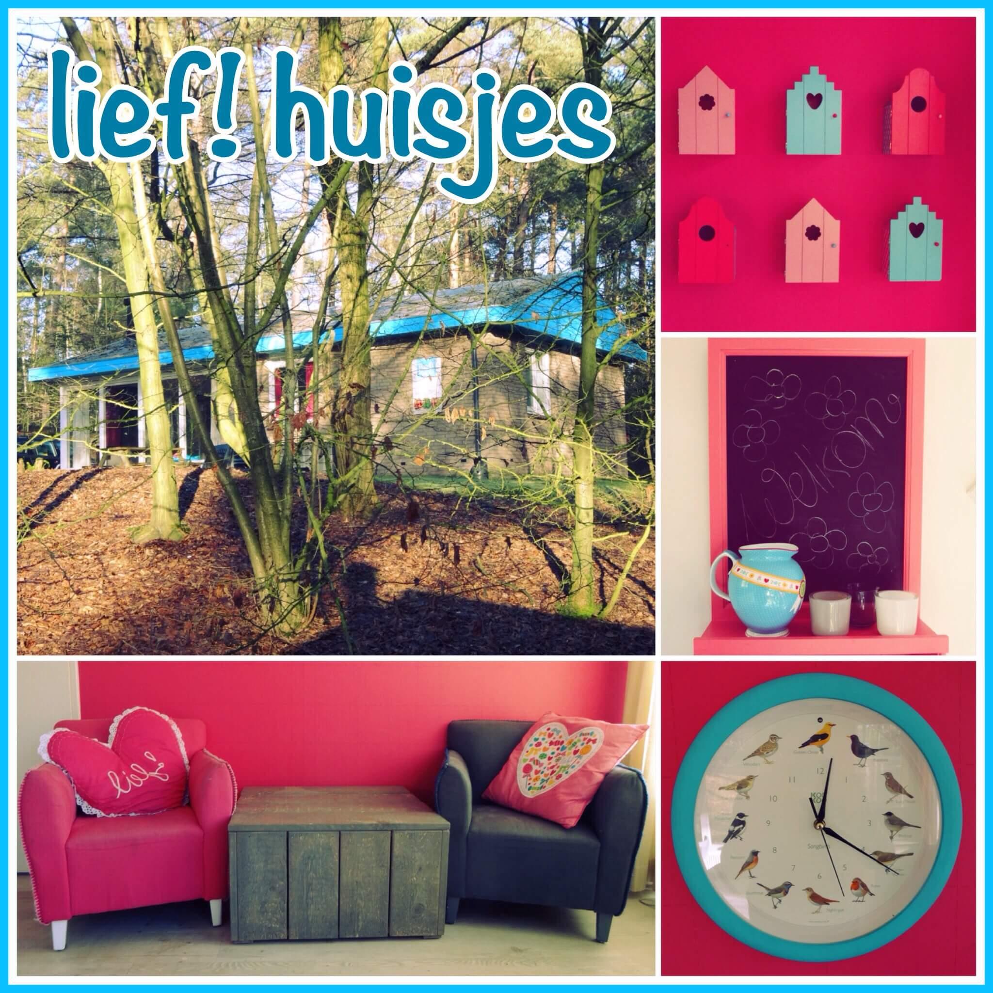 Lief! bungalows op Landal Coldenhove: vrolijke huisjes midden in het Gelderse bos