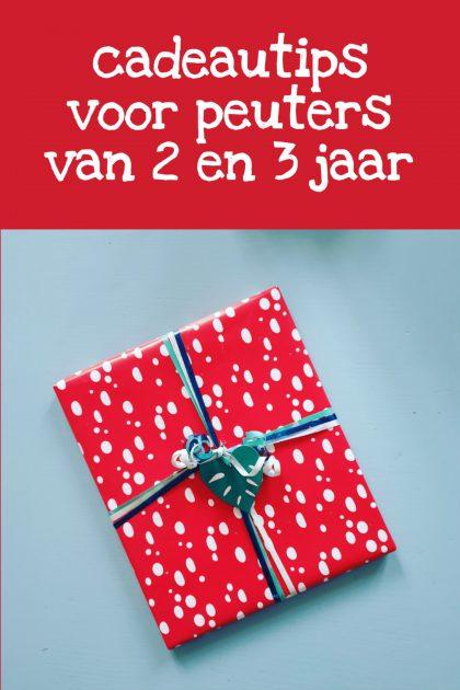 Verjaardagscadeau voor kids van 2 jaar of 3 jaar: leuke cadeau tips voor peuters