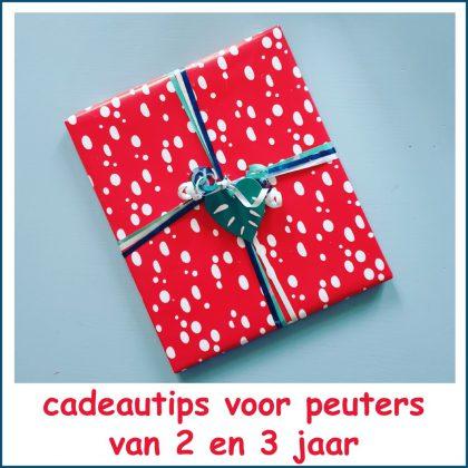Vaak Peuter verjaardag: cadeau ideeën voor kinderen van 2 of 3 jaar #YO69