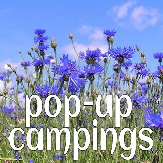 Trend: pop up campings