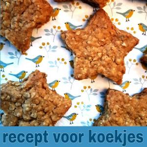 Recept voor koekjes om te bakken met de kinderen