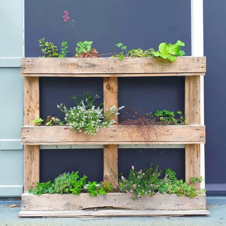 Plantenbakken voor moestuintjes ideeën om te knutselen en uit de winkel. Deze plantenbak gemaakt van pallets is handig voor verticaal tuinieren, fijn als je weinig ruimte hebt.