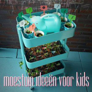 Moestuintje: creatieve ideeën voor kinderen