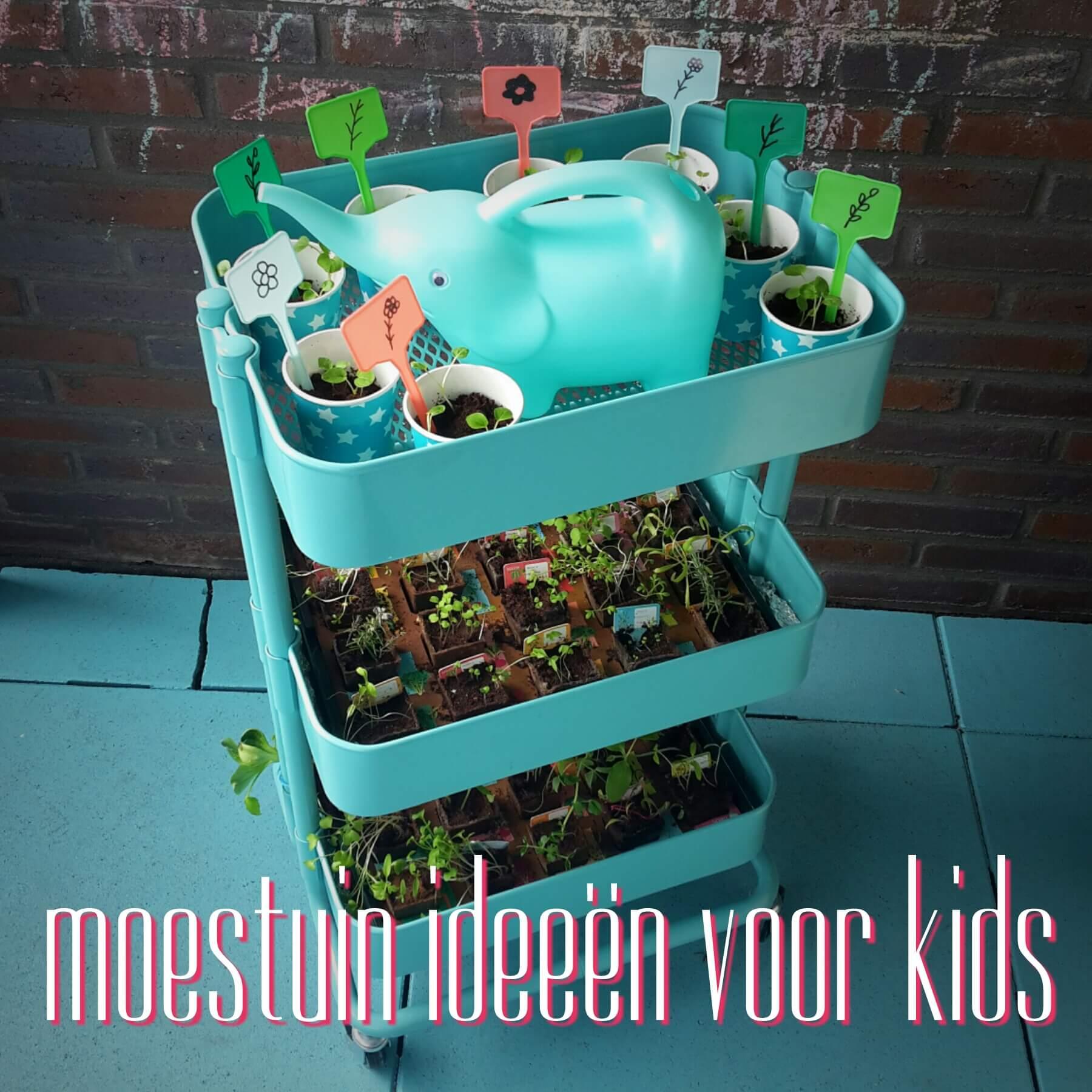 https://www.leukmetkids.nl/moestuintje-crea-ideeen-voor-kinderen/
