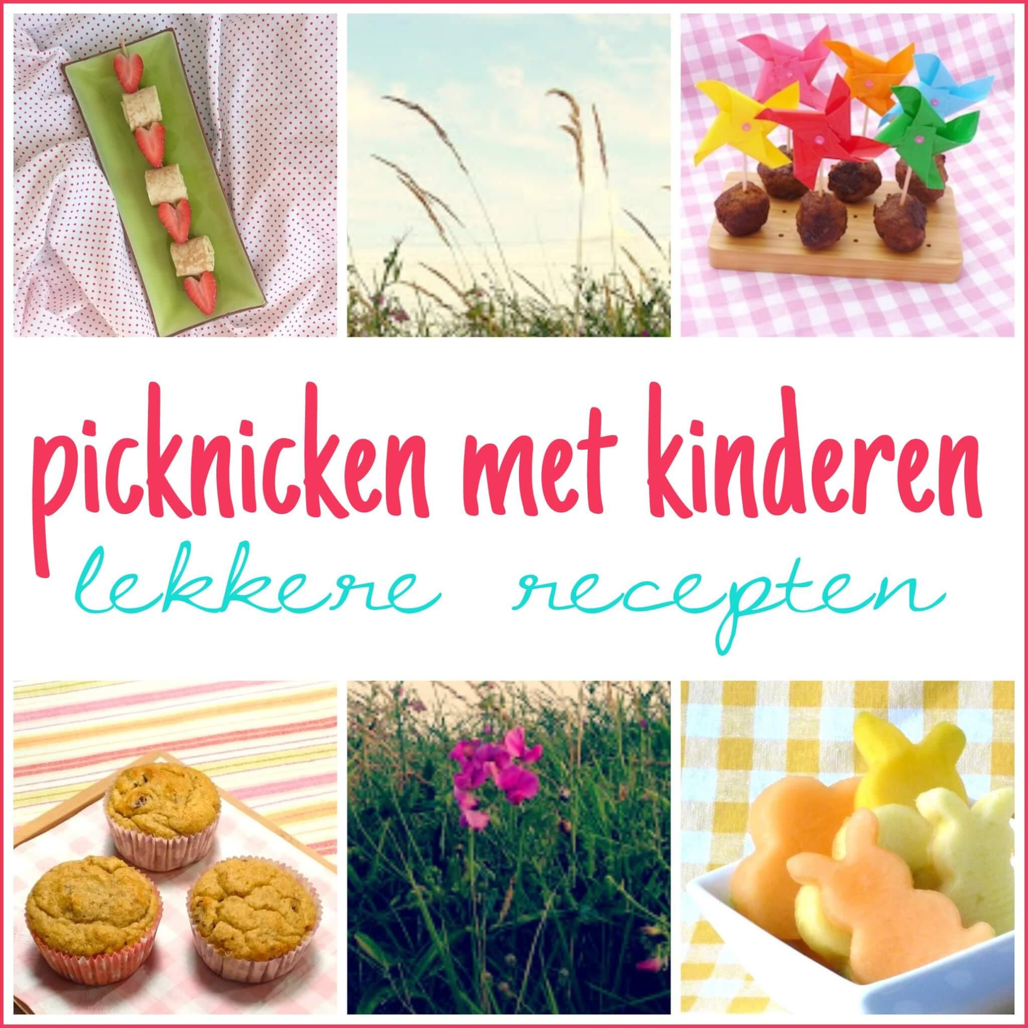 picknicken met kinderen lekkere recepten