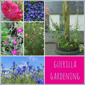 """Guerrilla gardening: waarom het zo leuk is om samen met de kinderen """"stiekem"""" overal bloemen planten"""