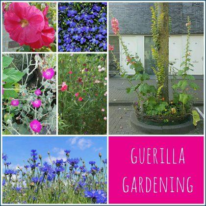 """Guerrilla gardening: samen met de kinderen """"stiekem"""" overal bloemen planten"""