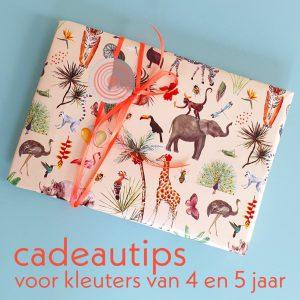 Kleuter verjaardag: cadeau ideeën voor kinderen van 4 jaar of 5 jaar