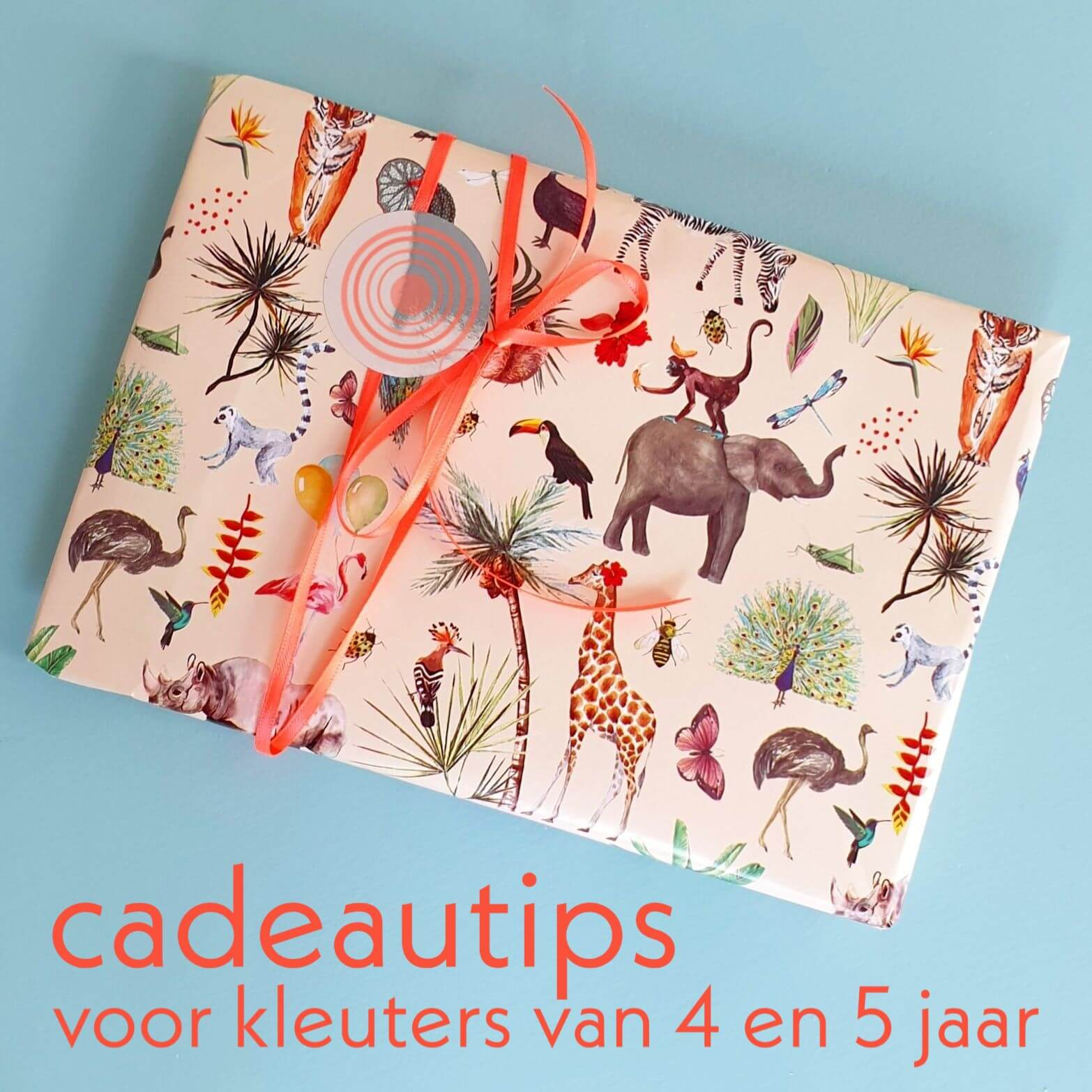 Verjaardagscadeau voor kids van 4 jaar of 5 jaar leuke cadeau tips voor kleuters
