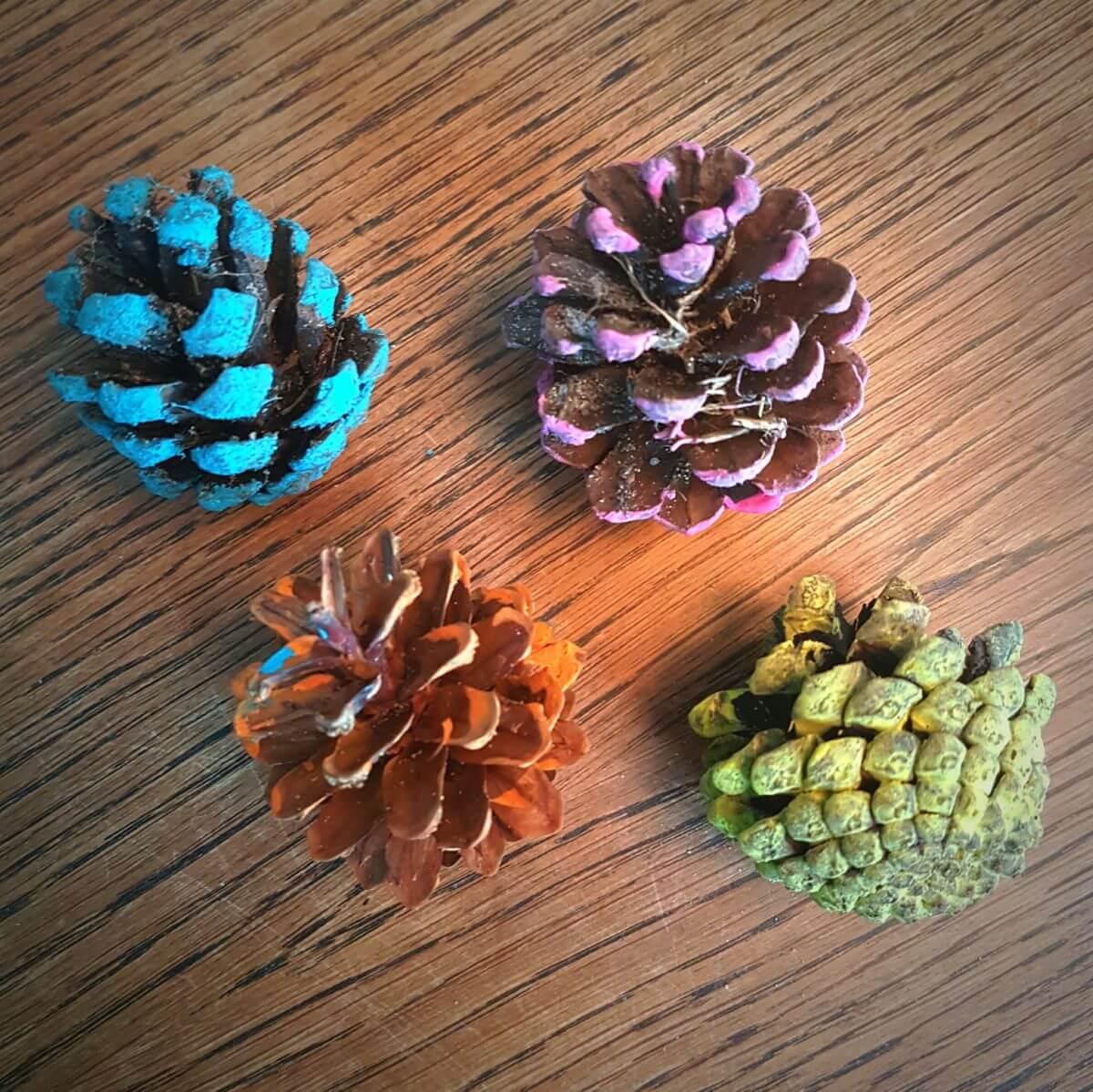 Herfst knutsels: samen knutselen als het buiten kouder wordt - dennenappels beschilderen