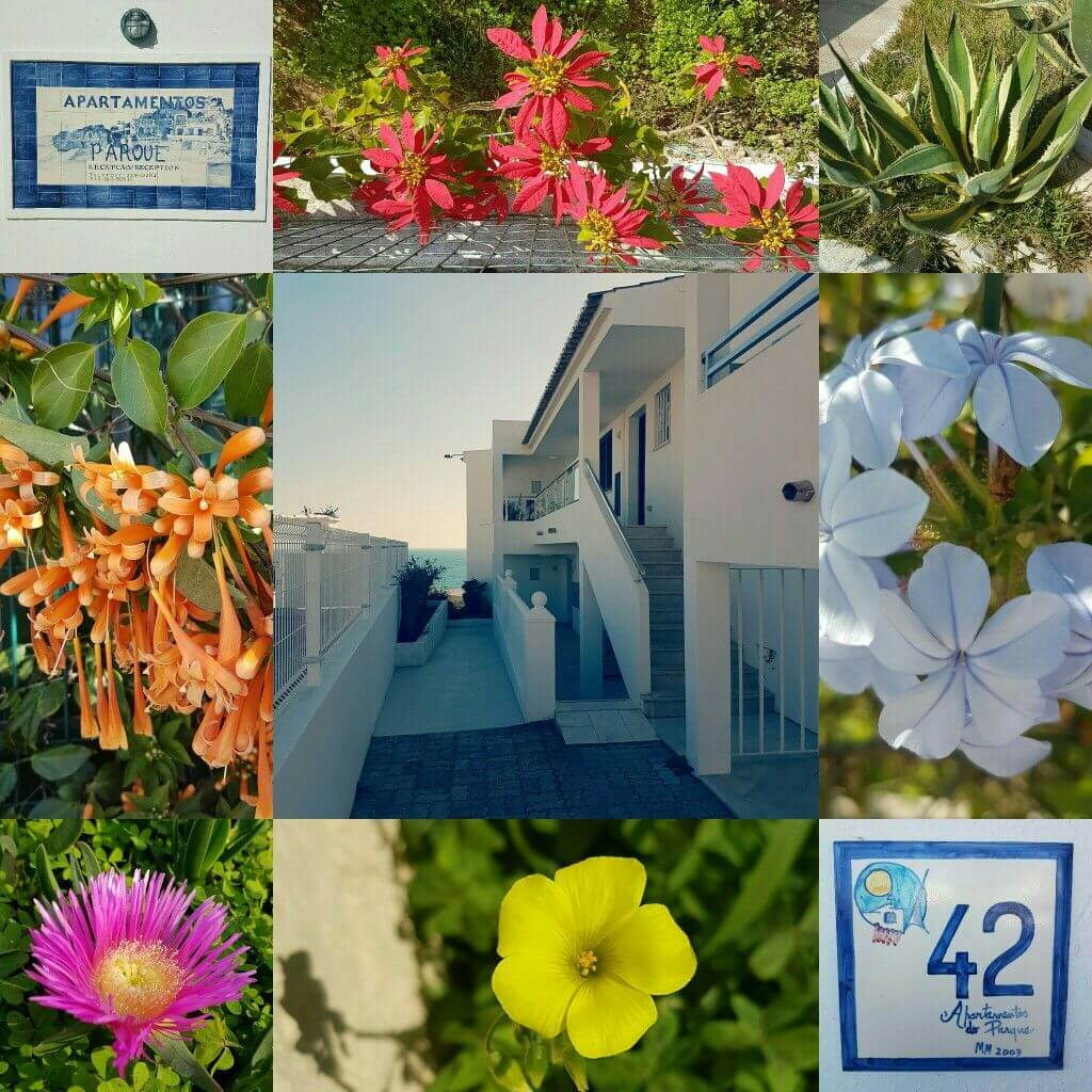Algarve met kids: Albufeira en Olhos d'Agua - Do Parque