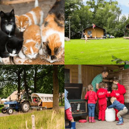 Een overzicht van heel veel leuke idyllische campings in Nederland met kids #leukmetkids FarmCamps De Boderie