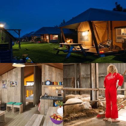 Een overzicht van heel veel leuke idyllische campings in Nederland met kids #leukmetkids FarmCamps Mariekerke in Meliskerke op Walcheren in Zeeland