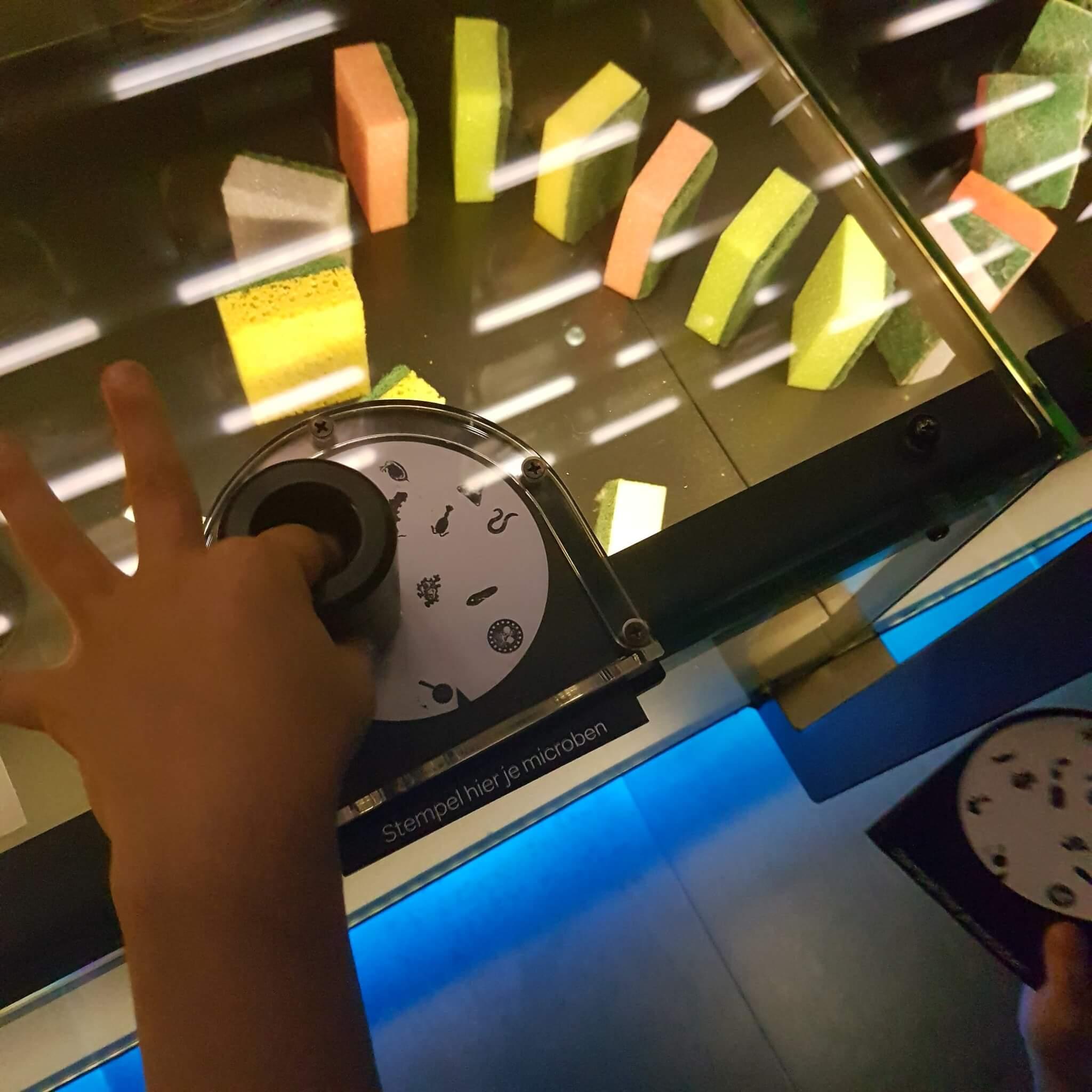 Uitje met kids: dierentuin Artis en Micropia in Amsterdam