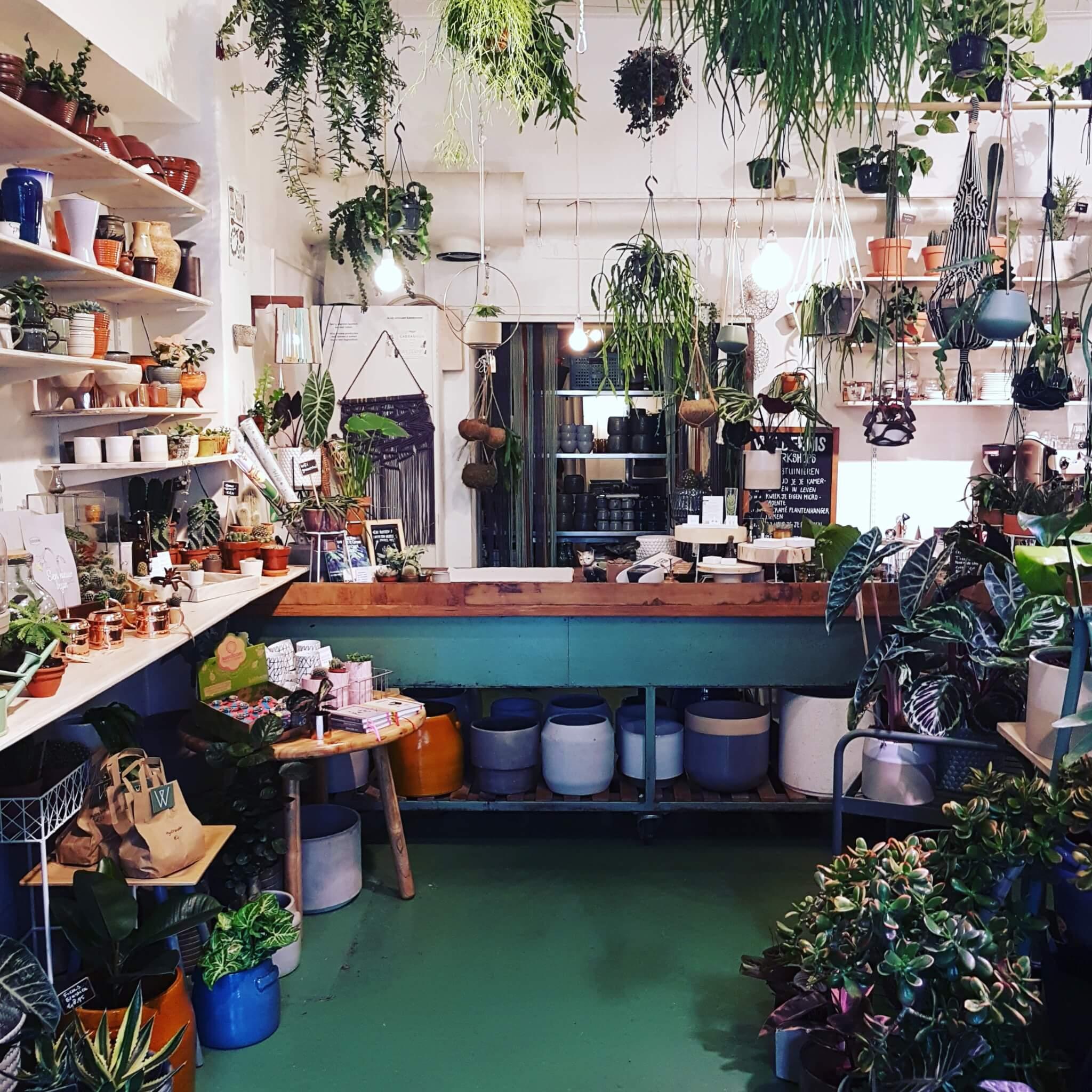 Shoppen op de Amsterdamse Bilderdijkstraat: Wijs West en de Wildernis
