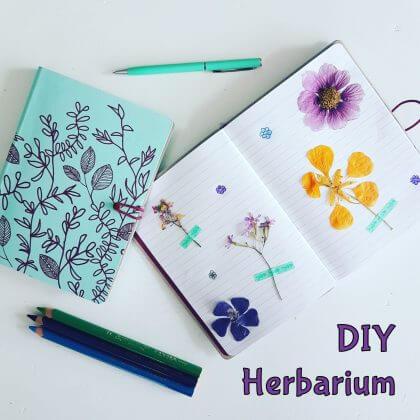 Verjaardagscadeau voor kids van 9, 10, 11 en 12 jaar: leuke cadeau tips voor bovenbouw kinderen #leukmetkids #verjaardag #cadeau #herbarium