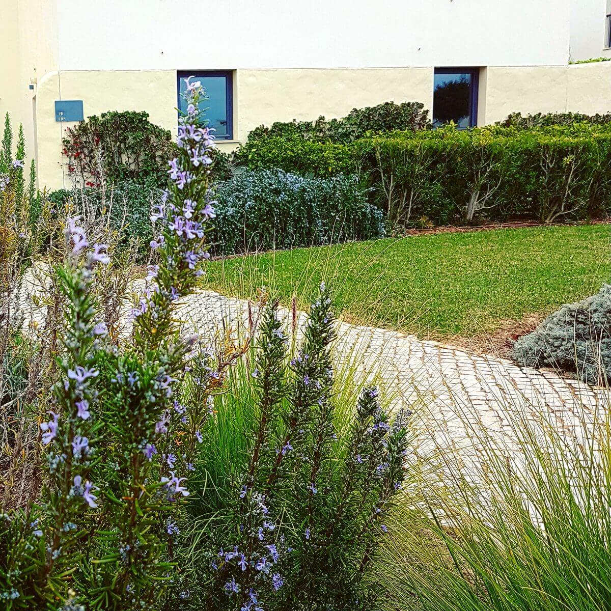 Algarve met kids: idyllisch familieresort Martinhal en met kids naar Sagres - hotel met zeezicht rozemarijn