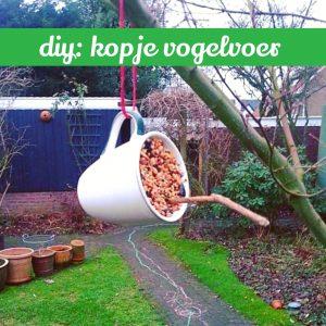 DIY: kopje vogelvoer zelf maken