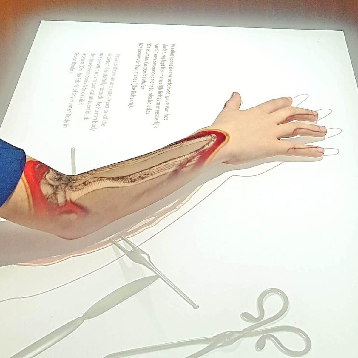 Uitje met kids: wetenschapsmuseum Rijksmuseum Boerhaave, met veel experimenten en spelletjes