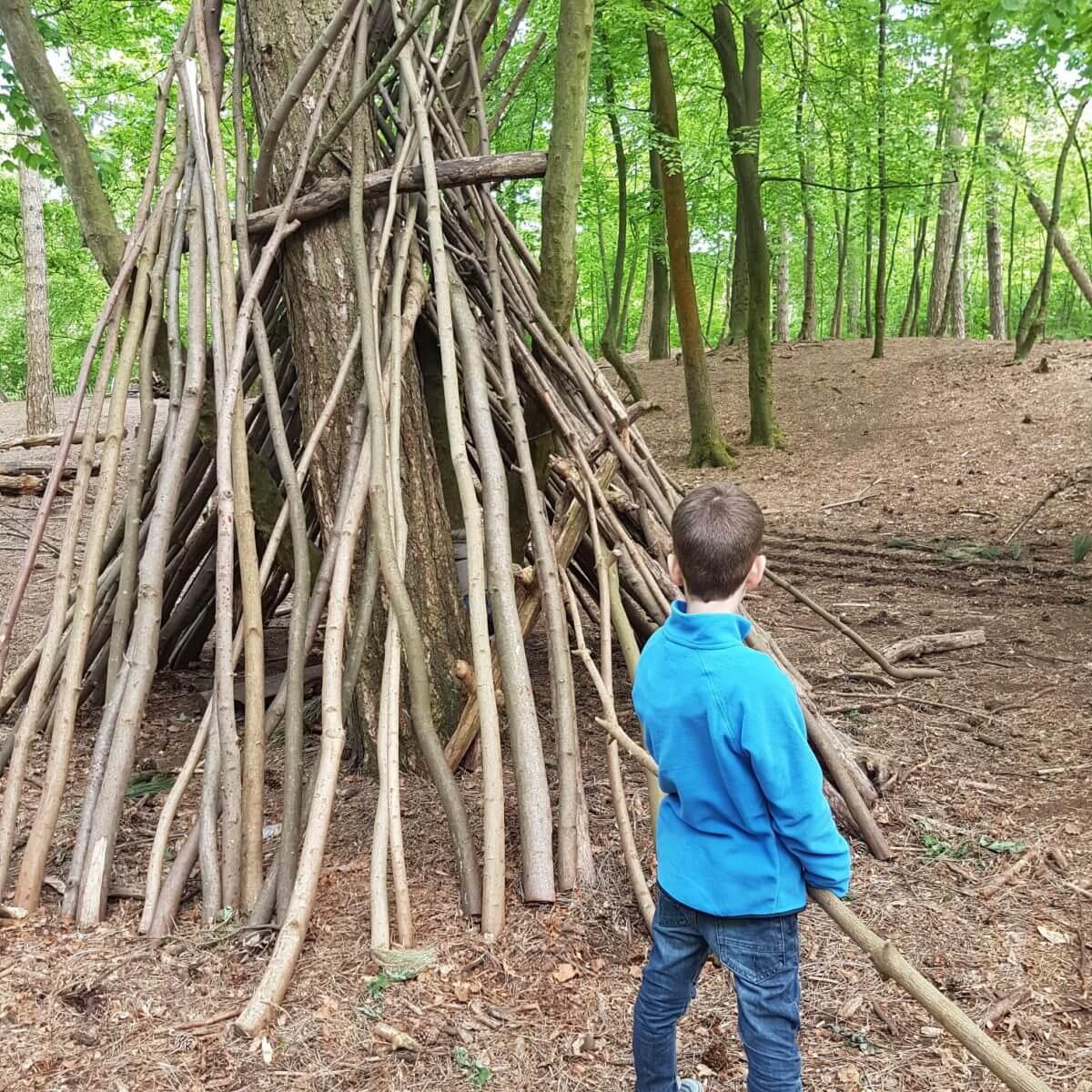 Avontuur op de camping: Geversduin in het Noordhollands duinreservaat