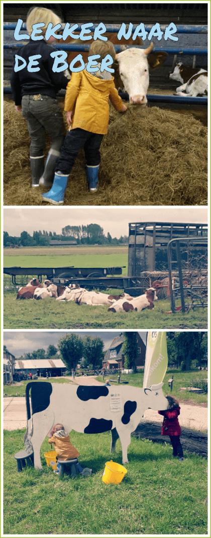 Uitje met kids: lekker naar de boer