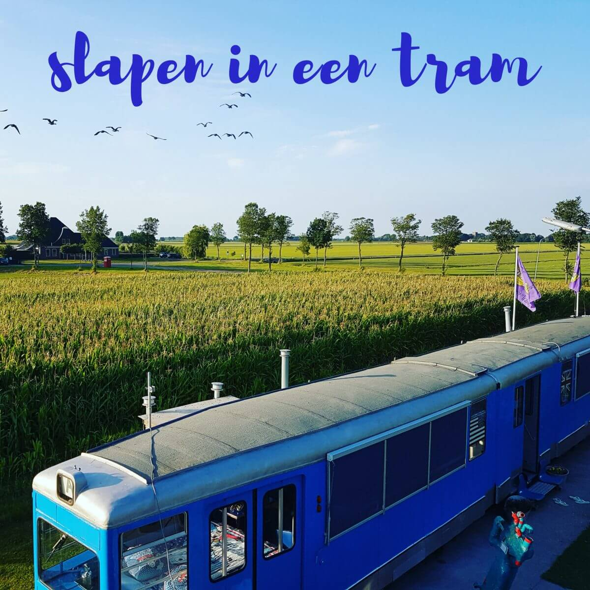 Slapen in een antieke tram... of een vliegtuig, trein of UFO