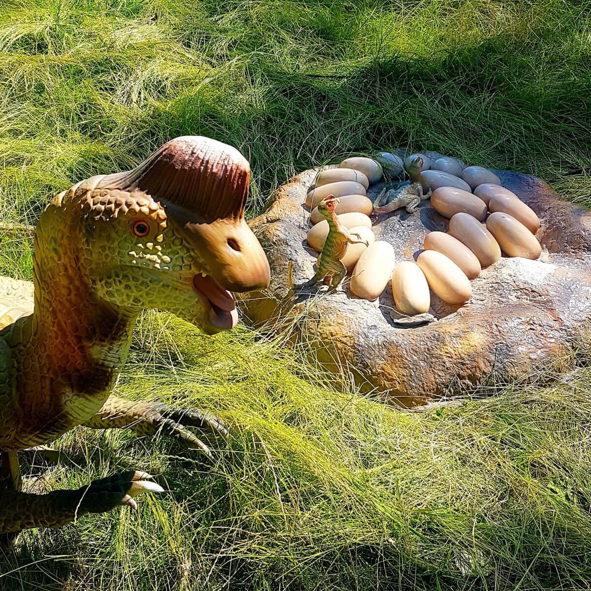 Uitje met kids: dino's kijken bij Jurassic Kingdom en daarna naar de speeltuin