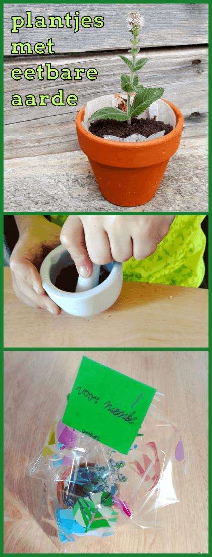 Leuk én lekker cadeautje maken met kids: plantjes met eetbare aarde #leukmetkids #verjaardag #kinderen #knutselen #opa #oma #eetbaarcadeau #kokenmetkids #juffendag #meestersdag #vaderdag #moederdag