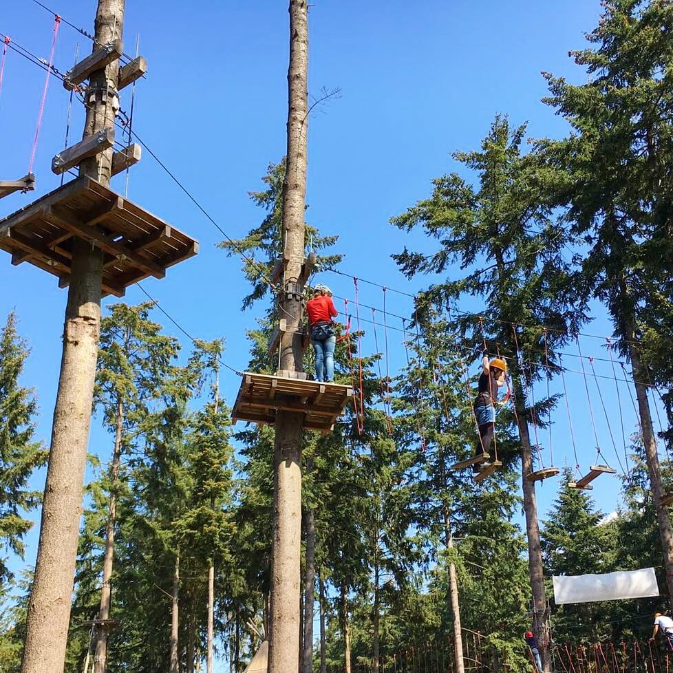 Landal Mont Royal: spelen, zwemmen en wijnproeven met een panoramisch uitzicht klimbos Adventure Forest Traben Trarbach