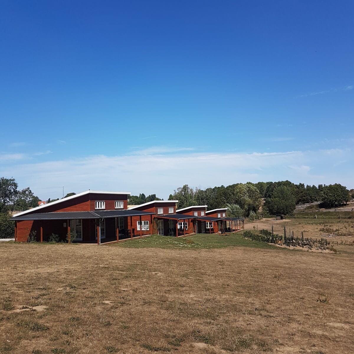 Ditlevsdal Bisonfarm: op bisonsafari of zelfs slapen tussen de bizons, op het eiland Funen in Denemarken, prairie cottages #leukmetkids #vakantie #kinderen