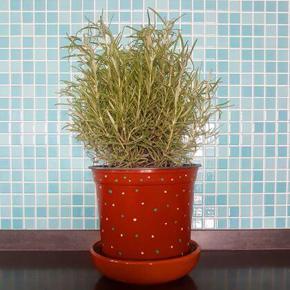 met stiften een plantenpot versieren