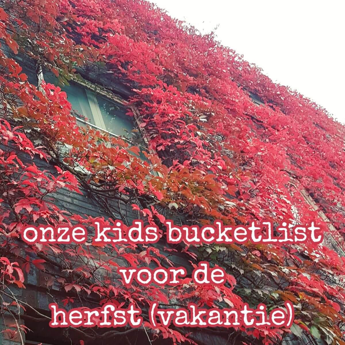 Onze kids bucketlist: leuke activiteiten in de herfst(vakantie)