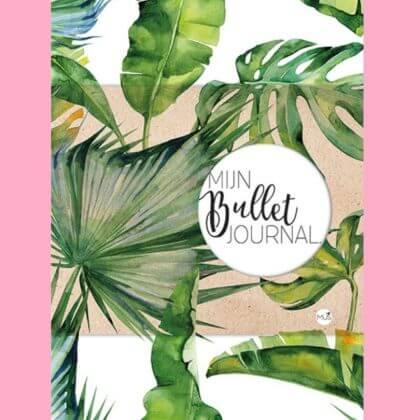 Verjaardagscadeau: Bullet journal mus creatief