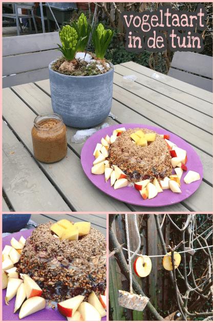 Zelf maken in de winter: vogeltaart in de tuin