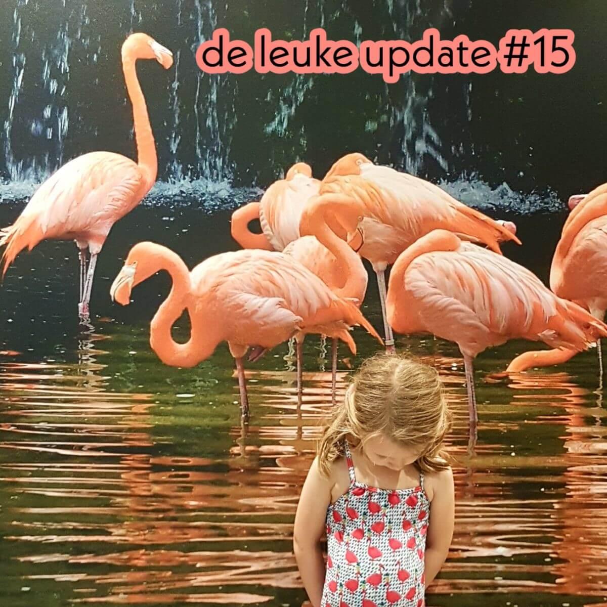 De Leuke Update #15 | lente nieuwtjes & kids uitagenda