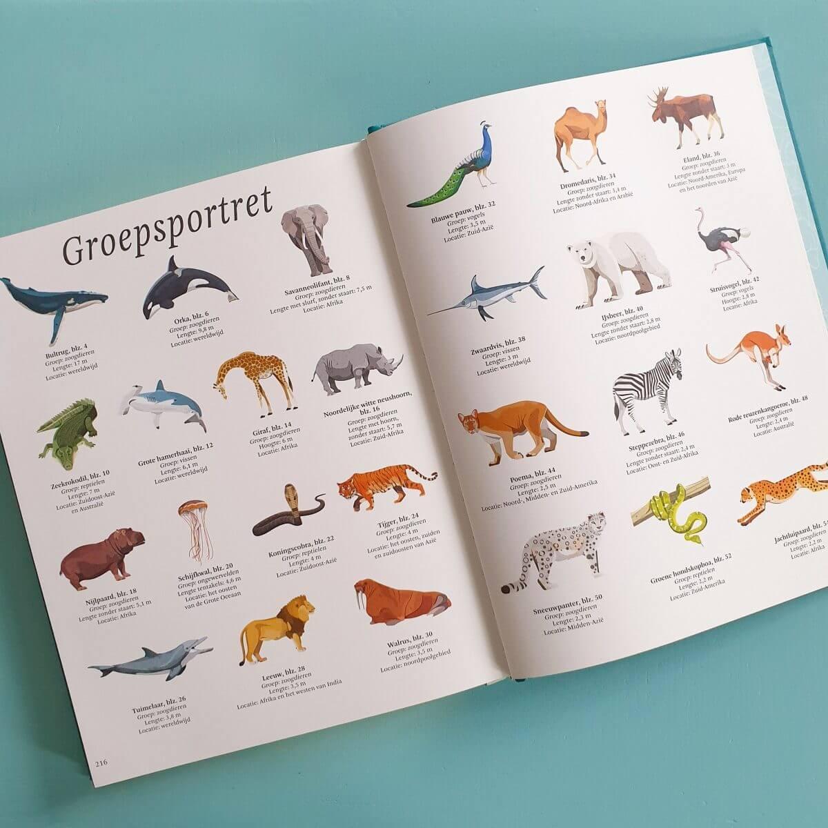 Boekentip: het dikke boek van alle bijzondere dieren