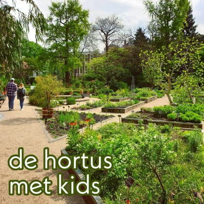 Uitje met kids: leren over planten in de Hortus