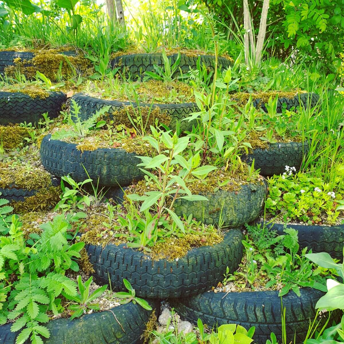 van autobanden een plantenbak maken