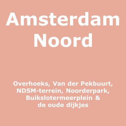 Amsterdam Noord met kinderen
