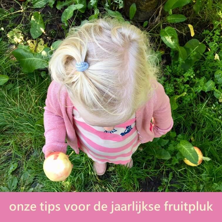 De jaarlijkse fruitpluk en appelpluk met kinderen: onze tips