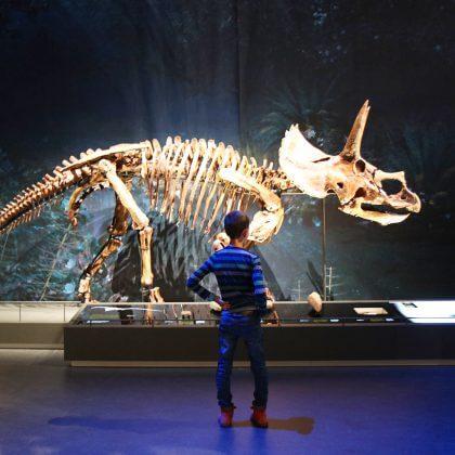 101 leuke uitjes met kinderen in Nederland en België – binnen en buiten. Dino skelet in museum Naturalis in Leiden