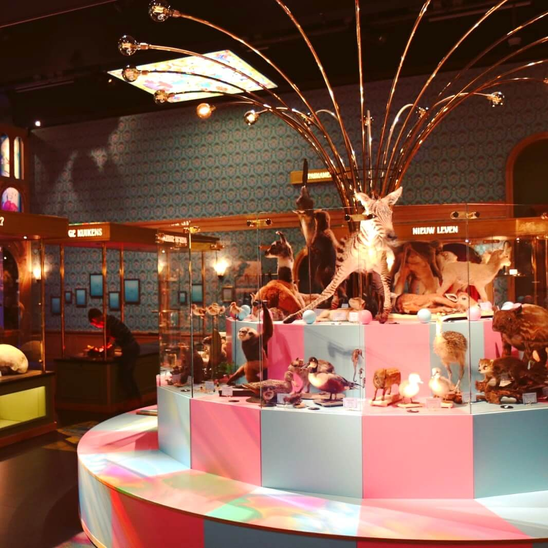 Museum Naturalis met kinderen: voorplanting uitgelegd