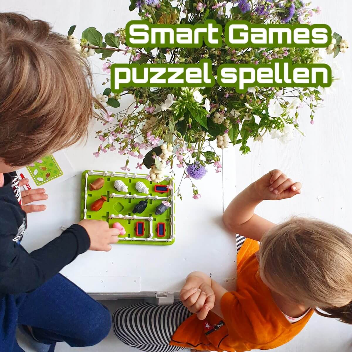 Smart Games: puzzel spelletjes die je alleen of samen kunt doen, maar nooit tegen elkaar