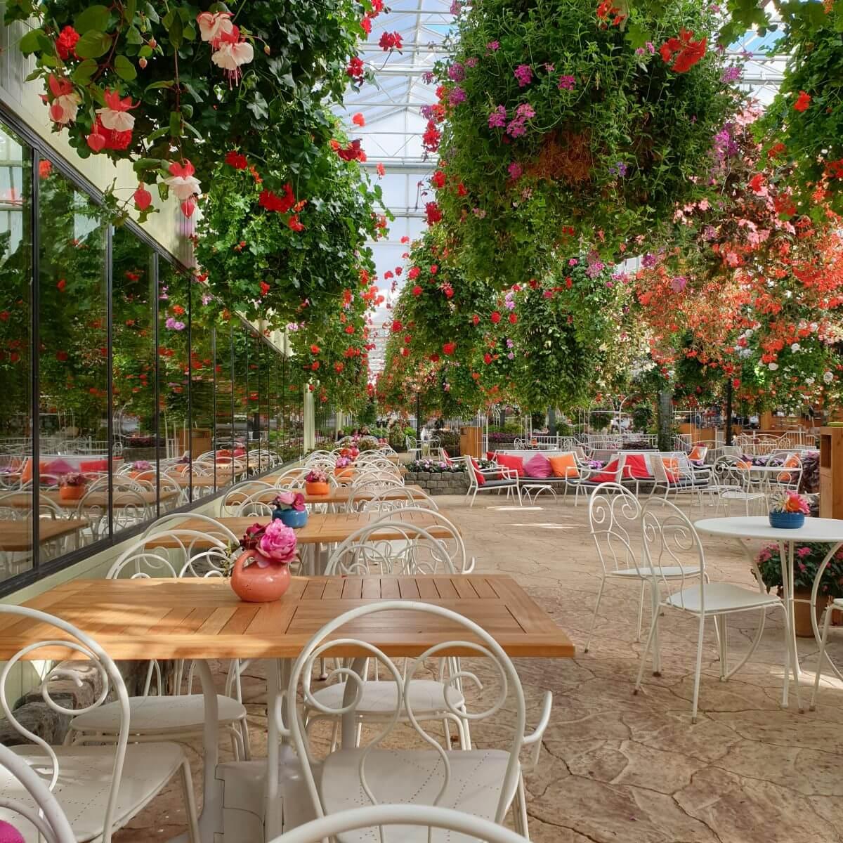 Binnen uitje met kinderen in Flevoland: de Orchideeënhoeve, met restaurantje