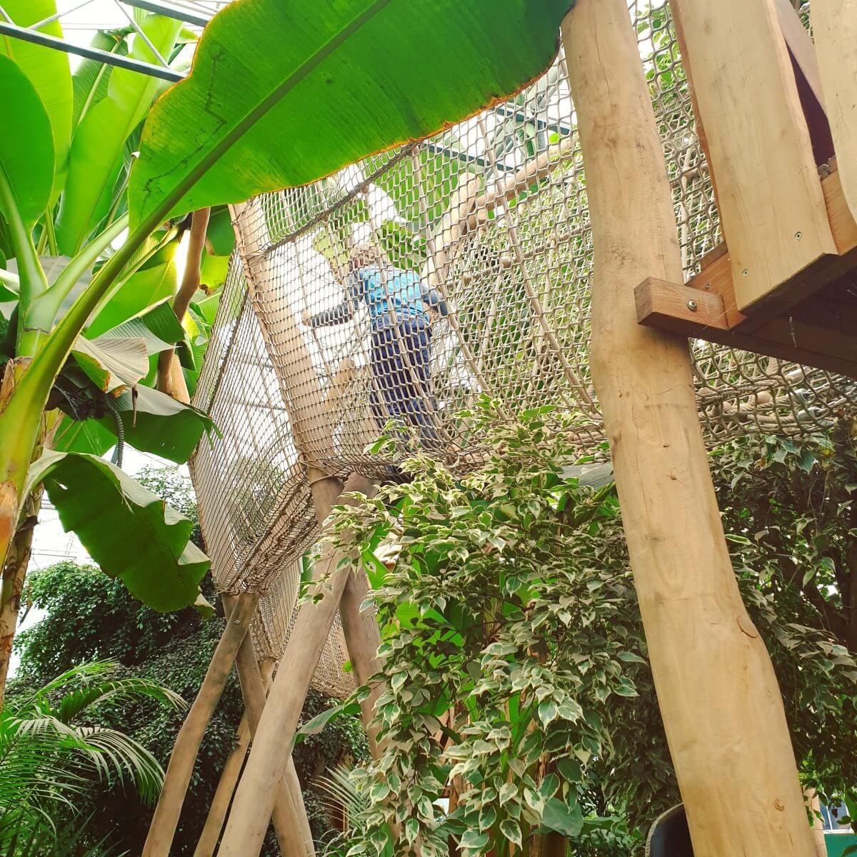 Binnen uitje met kinderen in Flevoland: de Orchideeënhoeve, met grote binnenspeeltuin