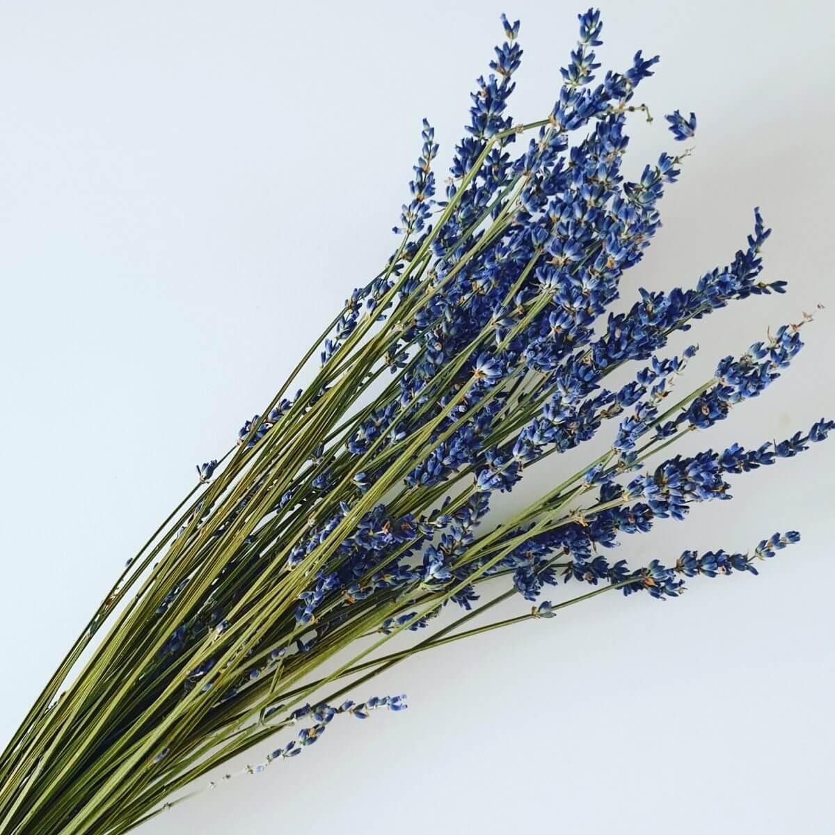 Droogbloemen: een duurzaam cadeau voor een vrouw of meisje