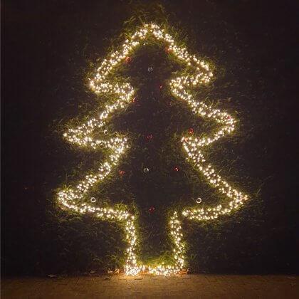 Super leuk initiatief: in sommige wijken wordt opgeroepen om de buurt te verlichten met lampjes. Binnen of buiten rond de ramen, aan de gevel, of in de boom voor het huis wat lampjes. Om deze gekke tijd gezelliger te maken!